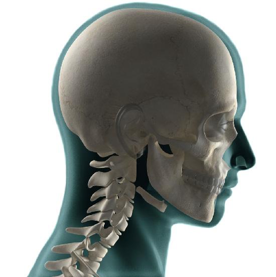 Rx Cranio a Domicilio